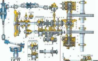 Схема трансмиссии тракторов Беларус МТЗ 82(80)