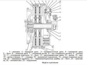 механизм сцепления мтз 3522