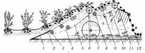 Схема работы картофелекопателя